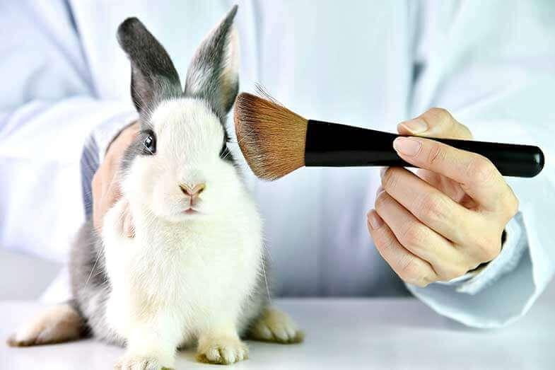 perricone md animal testing