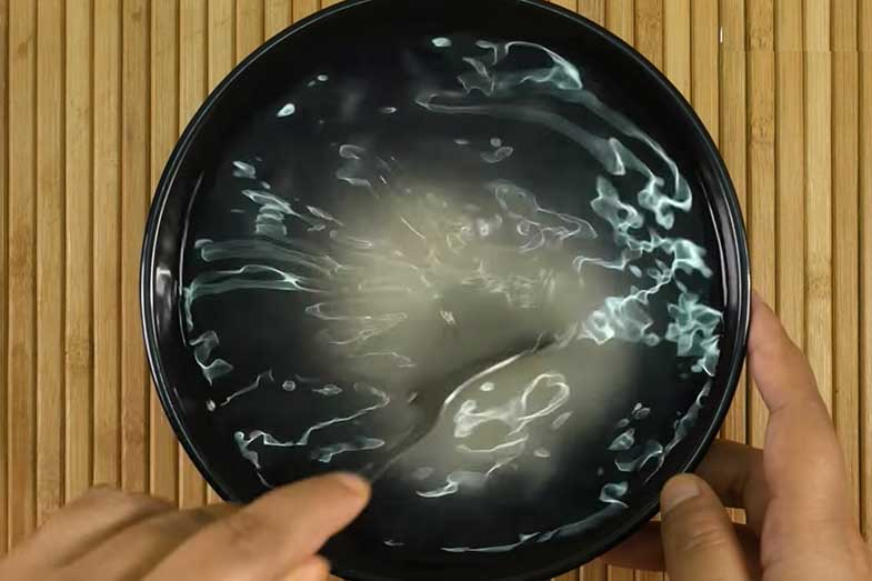 fermented rice water for skin