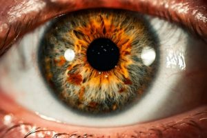 What Are Hazel Eyes? What Color Are They?
